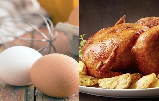 SC inicia estudio en la producción y distribución de huevos y carne de pollo