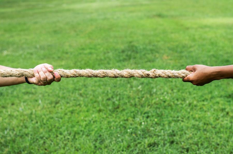 Competencia y regulación: complementarias, no sustitutas